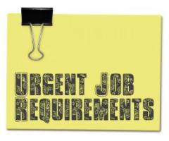Urgent Job Requirement Real Estate Agents